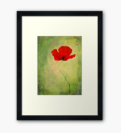 "Poppy (from ""Painted flowers"" collection) Framed Print"