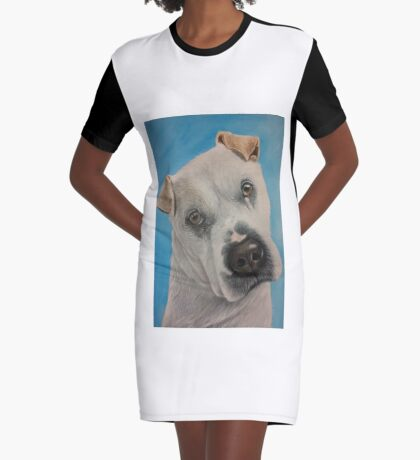 Meet Flash Graphic T-Shirt Dress