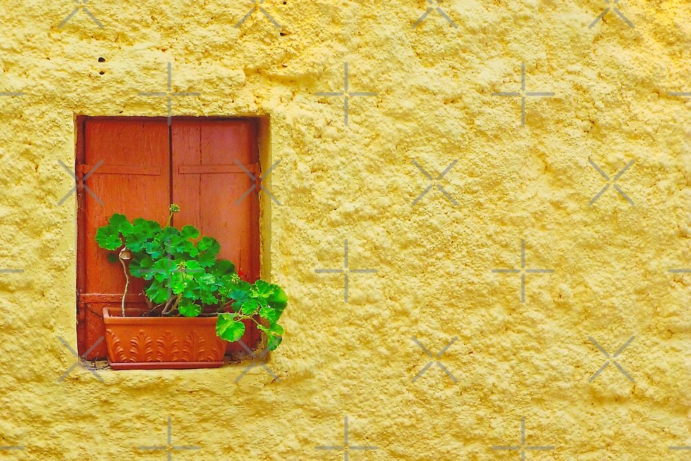 The Yellow Wall by EvaMarIza