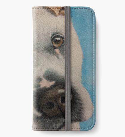 Meet Flash iPhone Wallet