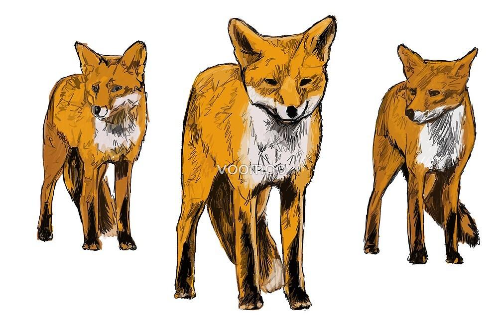 Fox , Urban fox's  by voomoo