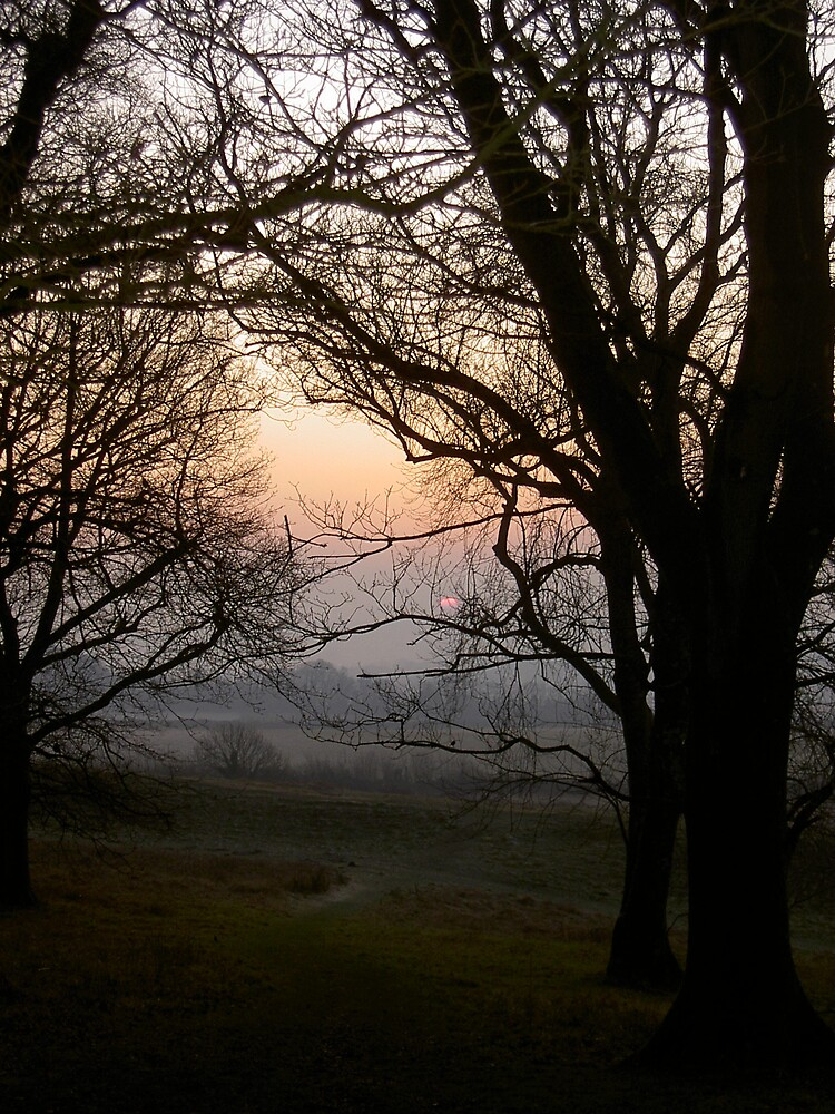 Dawn by Shapwickian