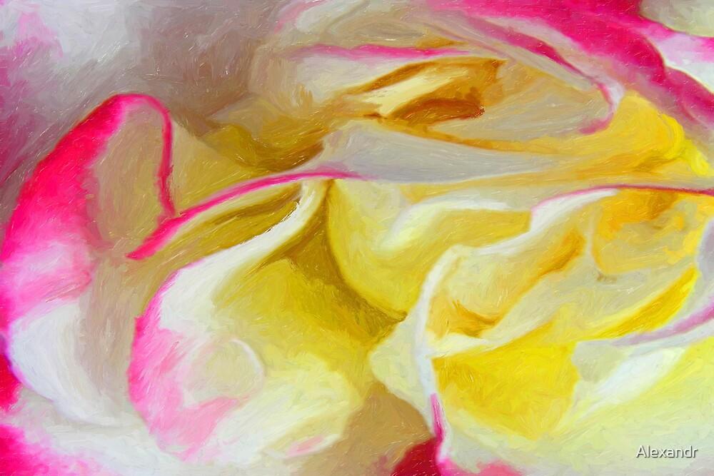 rose by Alexandr