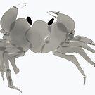 Crab by Shogam