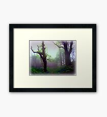 Mystical Morning Framed Print