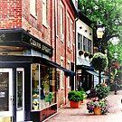 Annapolis MD - Along State Circle by Susan Savad