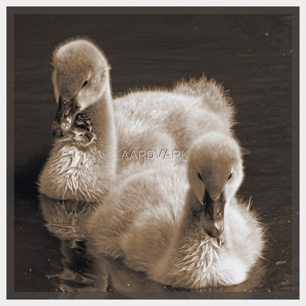 Abraham And Balthazar - Siblings In Sepia by AARDVARK