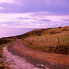 Dunedin Harbour3 by bouche