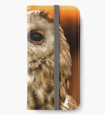 Portrait of owls iPhone Wallet/Case/Skin