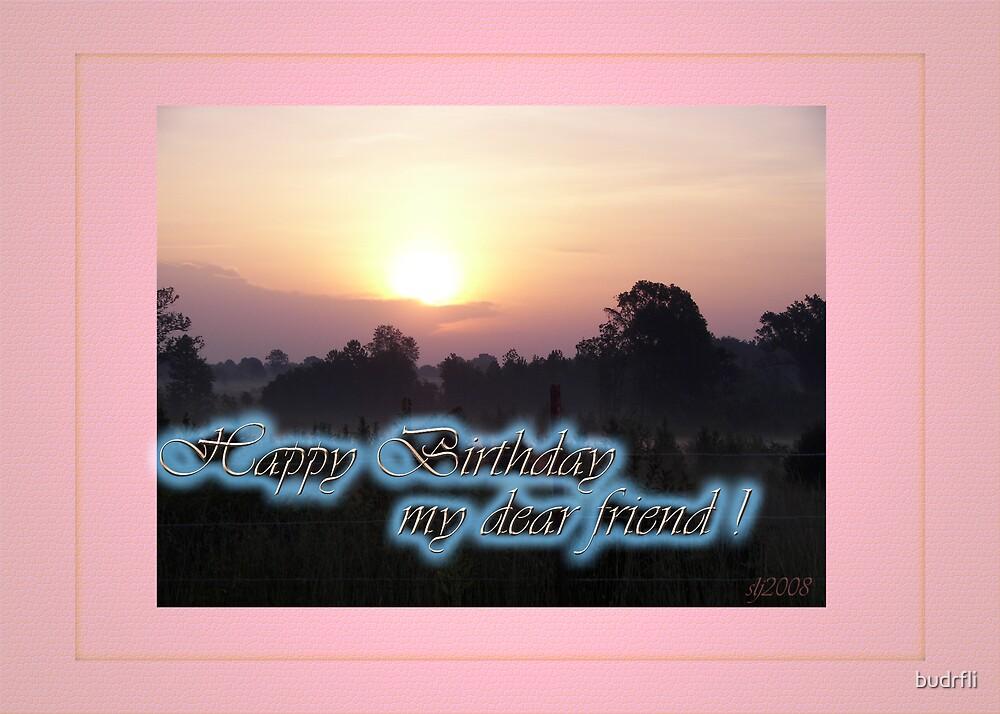 Happy Birthday Becky! by budrfli