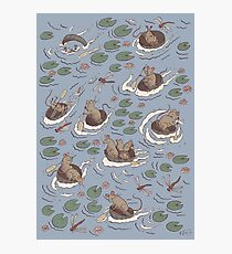 Coracle race - mice in lilies Photographic Print