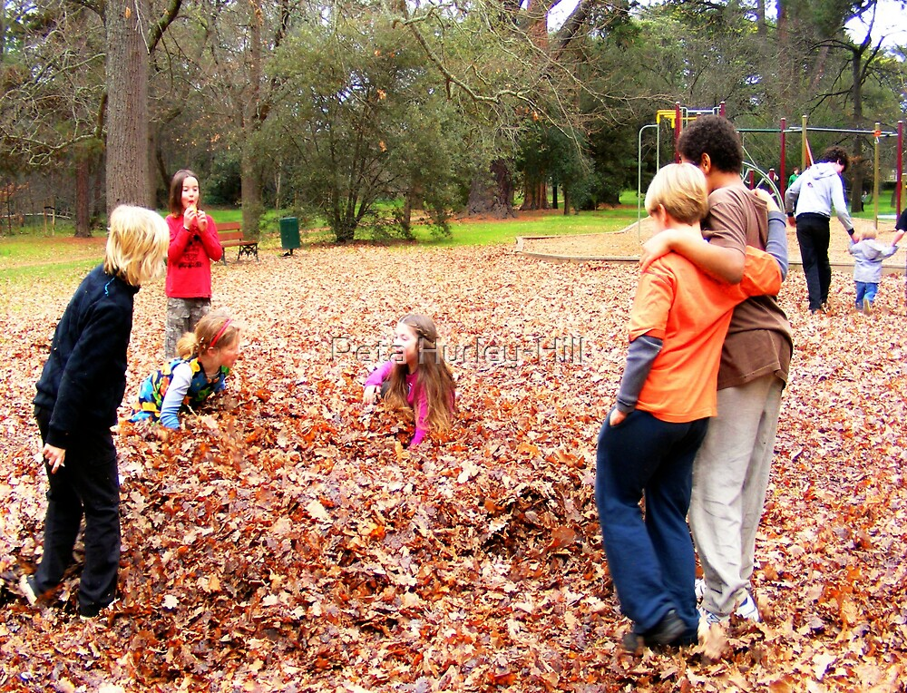 friends in the leaves by Peta Hurley-Hill