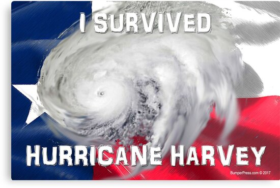 I Survived Hurricane Harvey by EyeMagined