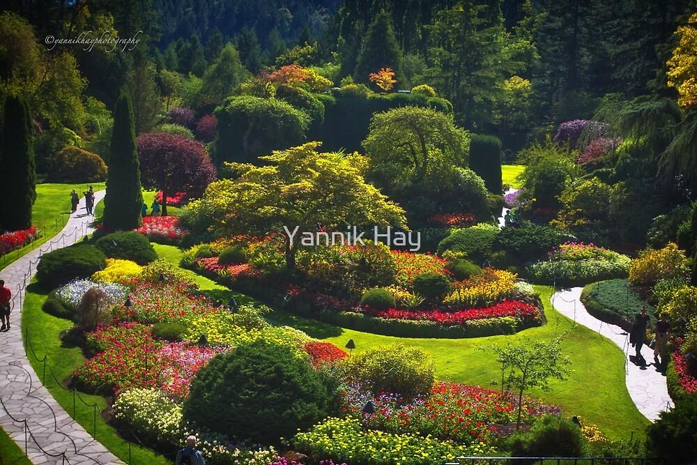 Sunken Garden - Butchart Garden by Yannik Hay