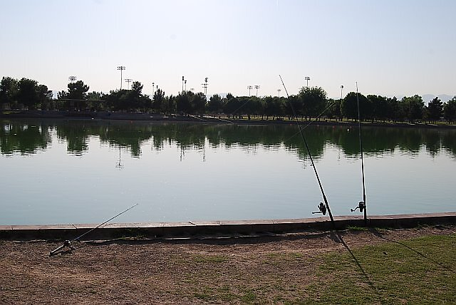 Las Vegas - Sunset Park Lake - Just Poles by Will Edwards