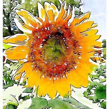 Sunflower #2 by elizabethamira