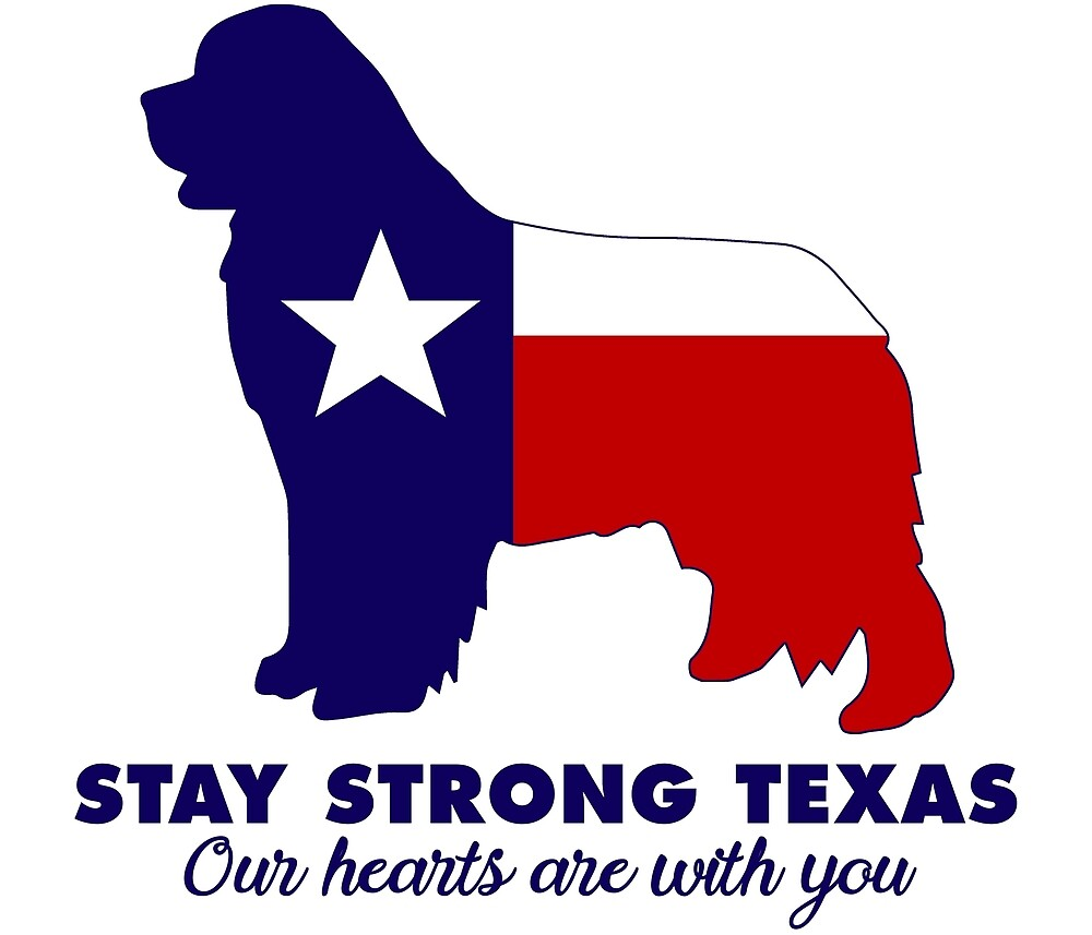 Stay Strong Texas by Christine Mullis