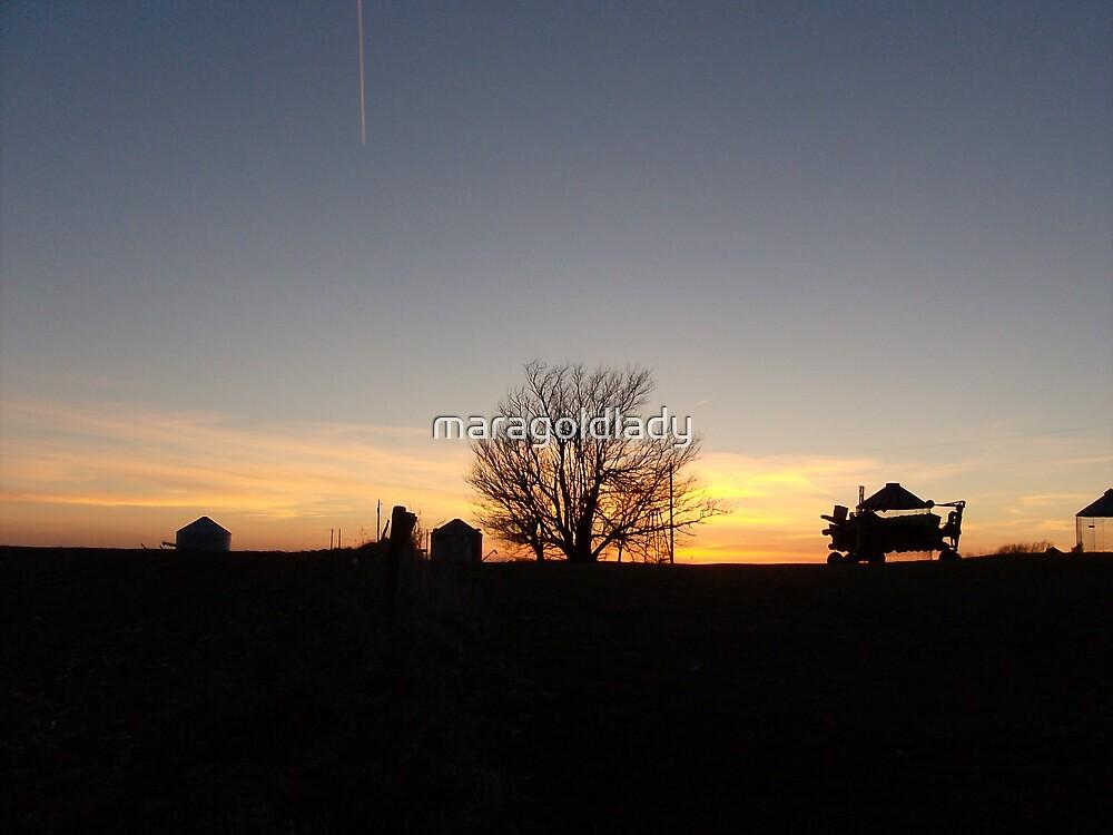 Sunset behind farm equipment in rural iowa by maragoldlady