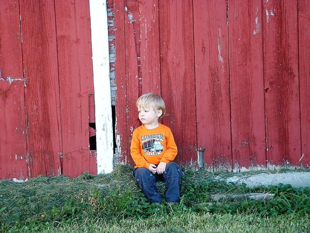 boy on a farm by hubernews