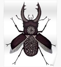 Stag beetle clock surreal black and white pen ink drawing Poster