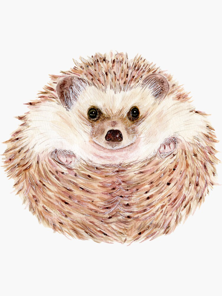 Hedgehog by VimandVerve
