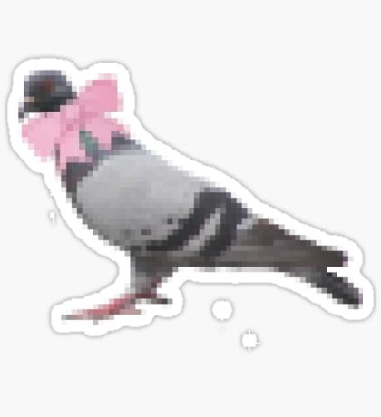 Pigeon version 1.1 Sticker