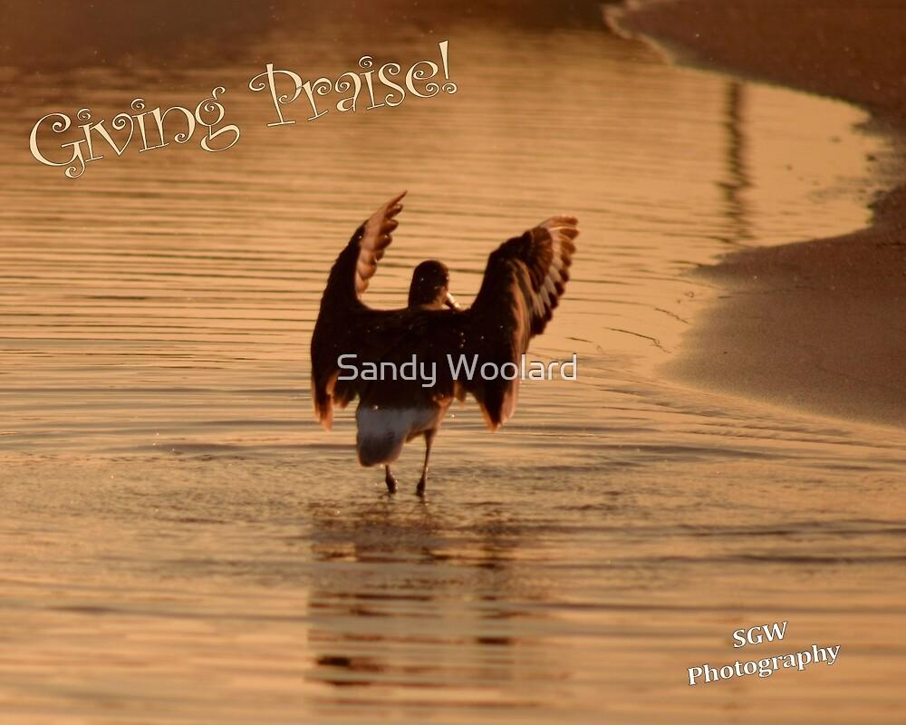 Giving Praise! by Sandy Woolard