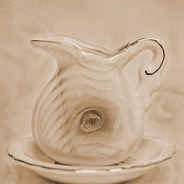 Pitcher And Saucer by SandraFoster