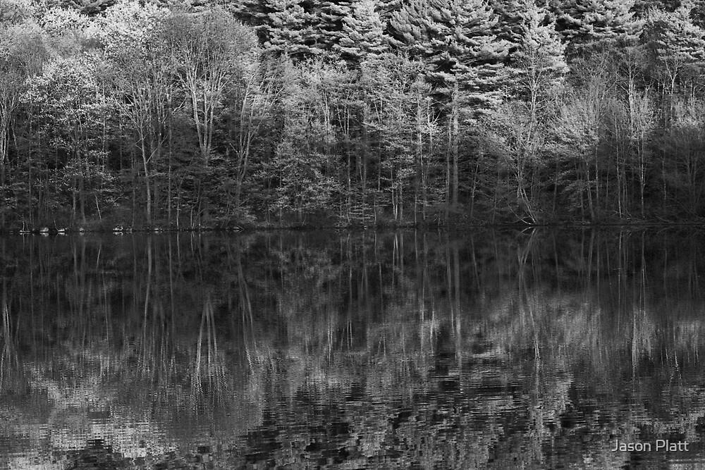 spring evening by Jason Platt