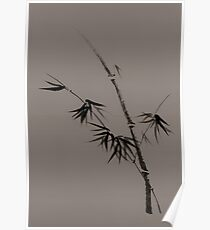 Bamboo stalk with young leaves minimalistic Sumi-e Japanese Zen design in natural colors art print Poster