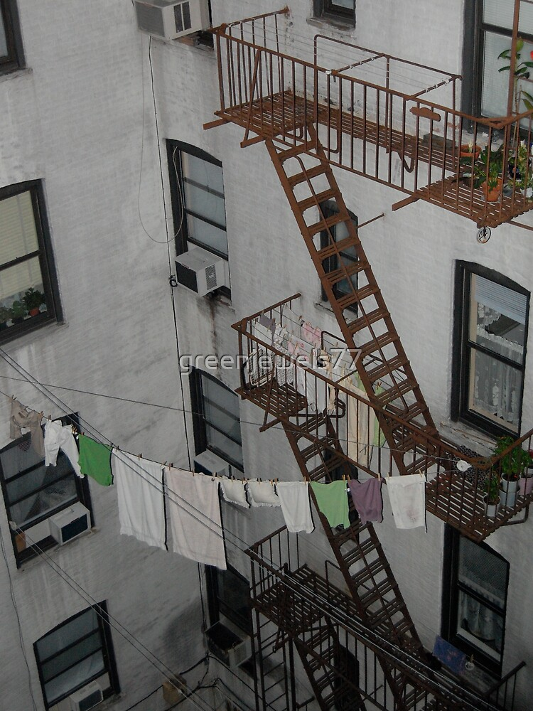 Laundry Lines & Ladders by greenjewels77