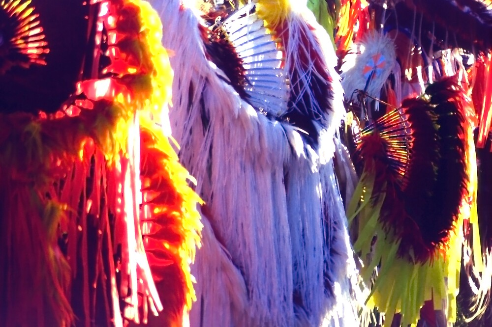 Indian Headdress Abstract by SteveOhlsen
