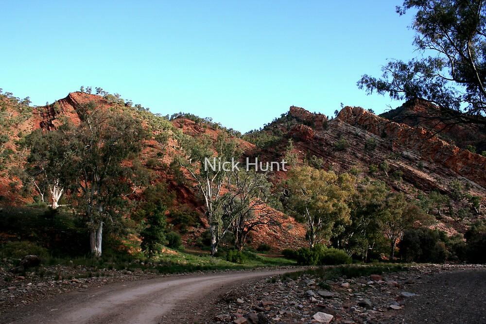 Brachina Gorge, Flinders Ranges, SA by Nick Hunt