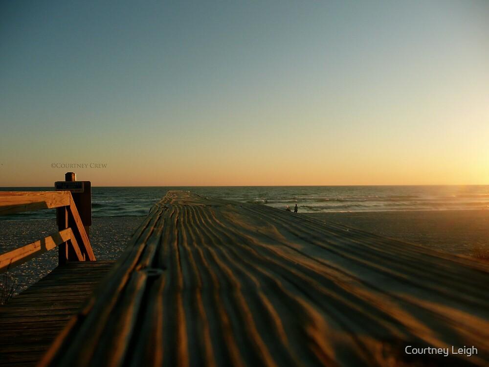 Walk the Sun by Courtney Leigh