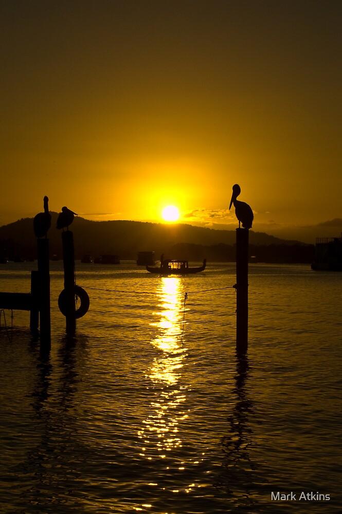 Sunset Cruise by Mark Atkins