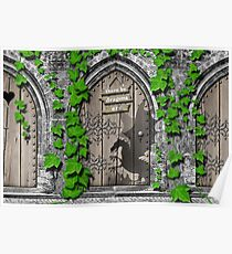 There be Dragons Medieval Fairy Door by Moose Disco Poster