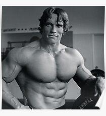 Póster Arnold Schwarzenegger