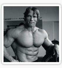 Arnold Schwarzenegger Sticker
