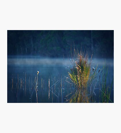 Where Dreams Like Rivers Flow Photographic Print