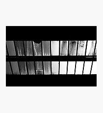 ceiling windows Photographic Print