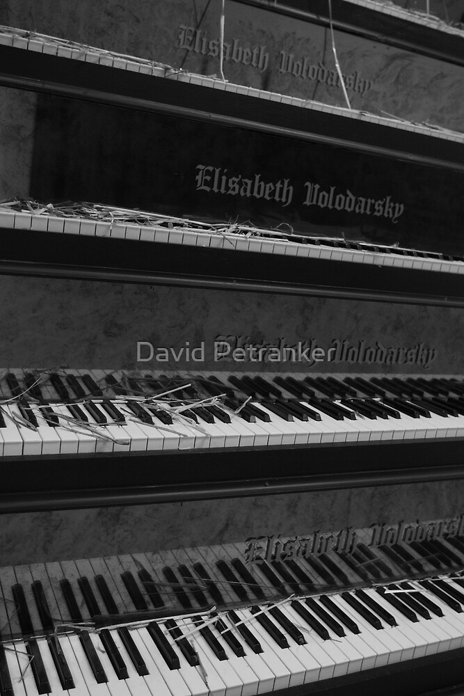 Which one shall I play by David Petranker