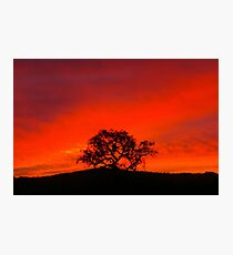 Stunning Skyscape Photographic Print