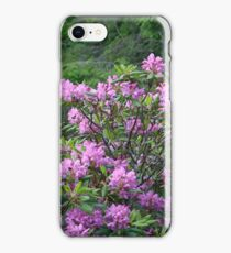 Catawba Rhododendron iPhone Case/Skin