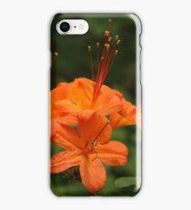 Flame Azalea iPhone Case/Skin