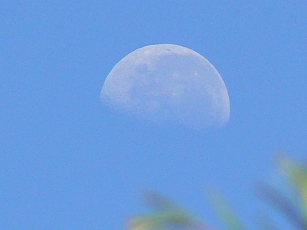Moon by LashyLashla