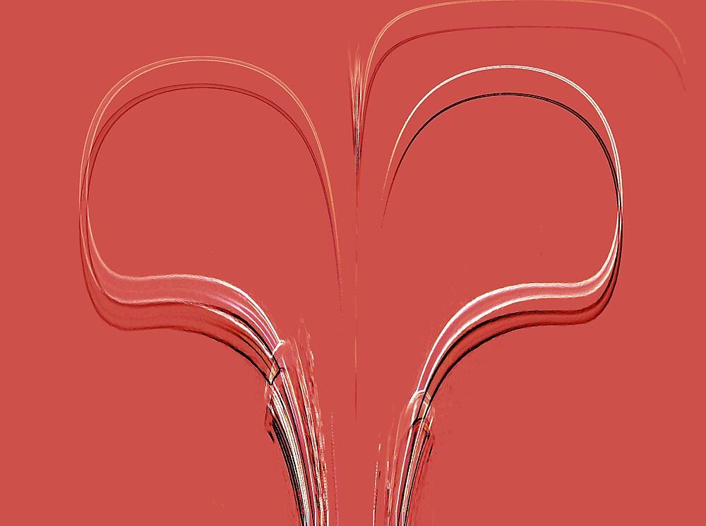 Great Red Heart by Chris  Jurek