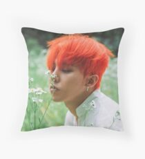 GD Throw Pillow