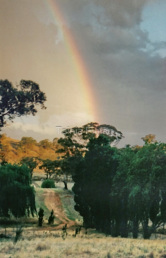 Avon Hills Rainbow by Tainia Finlay