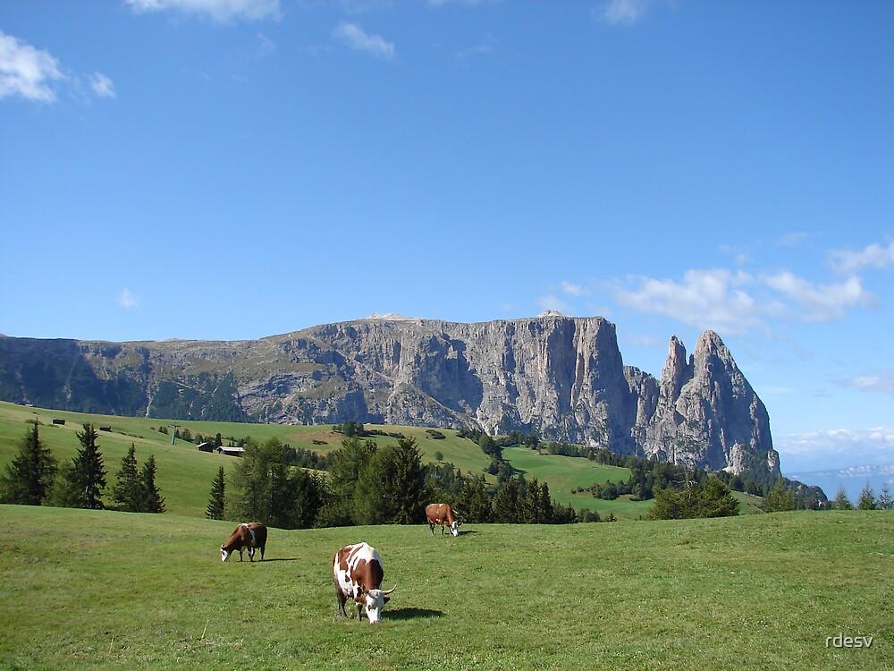 Schlern meadow by rdesv