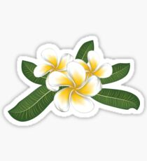 Pegatina White plumeria with leaves